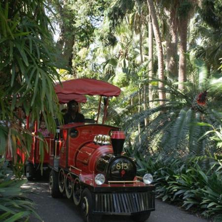Visiter Le Jardin Botanique De Sydney Autrement Qu'à Pied