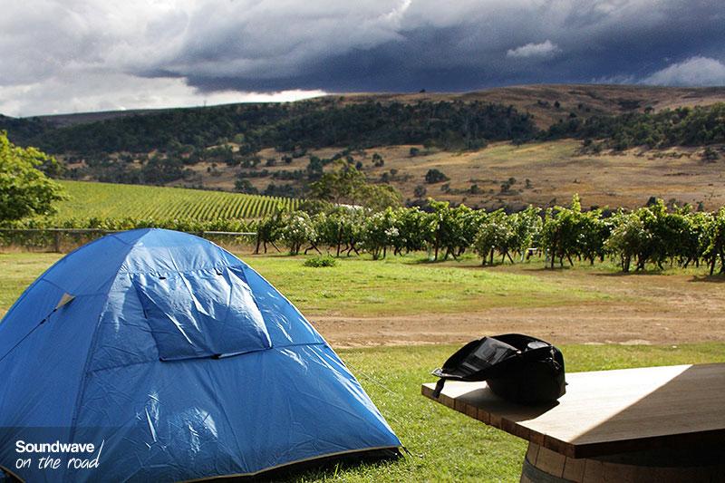 Tente bleue dans un vignoble