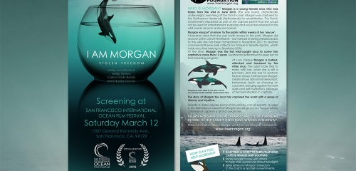 Flyer Pour La Diffusion Du Court Métrage I AM MORGAN / Rack Card Design For Festival Screening Of I AM MORGAN