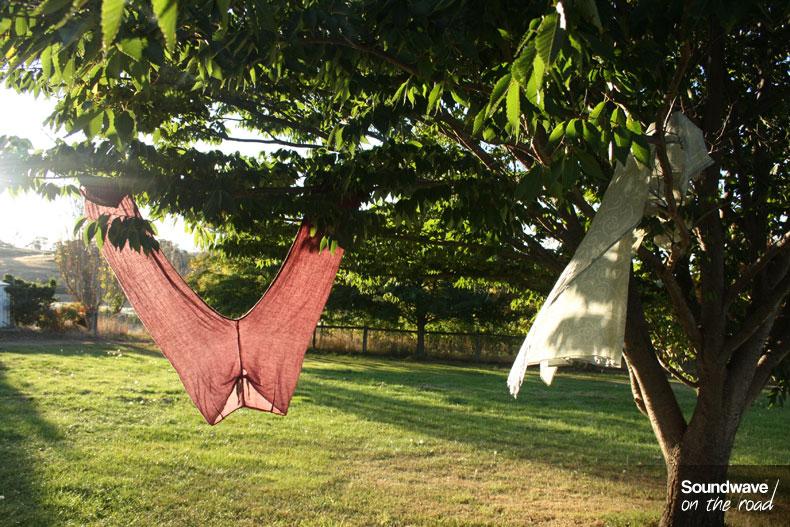 Du linge accroché à un arbre sèche au soleil