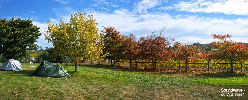 Paysage d'automne en Tasmanie