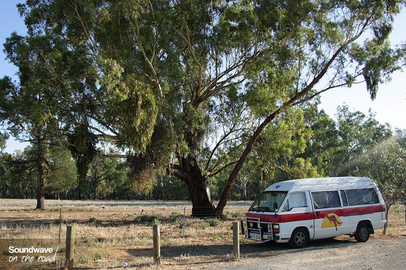Van et forêt en Australie