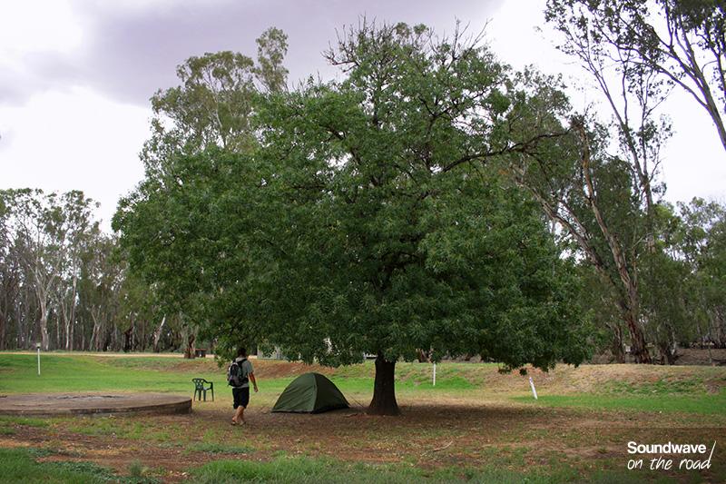 Camping : tente verte sous un arbre