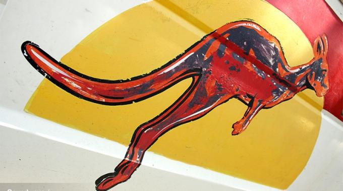 Kangaroo Van Painting