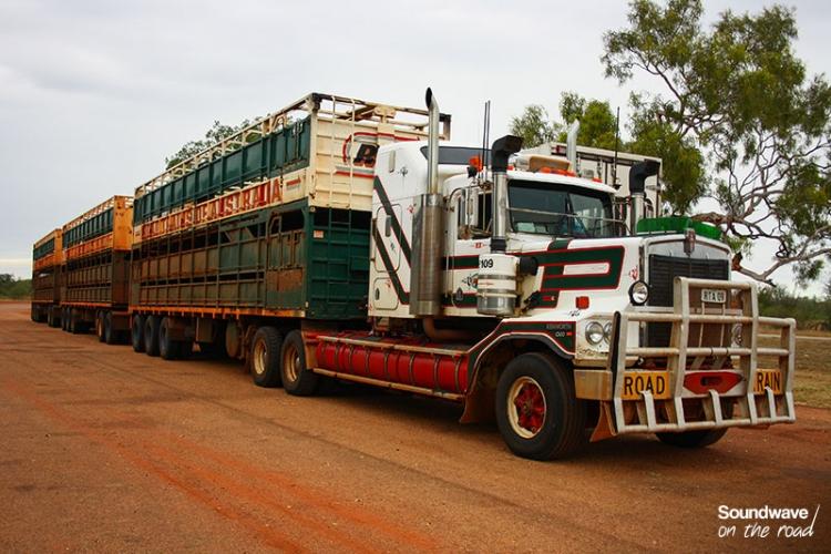 Un Camion De Troupeau Australien