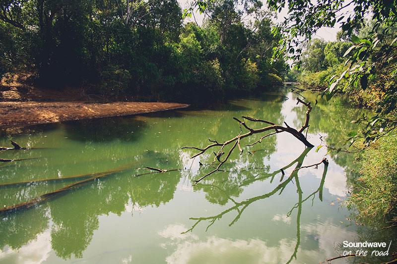 Edith River