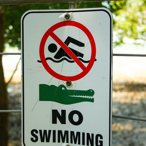 Crocodile No Swimming Sign