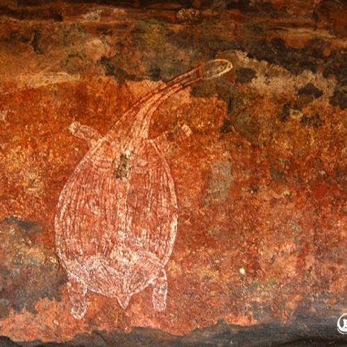 Xray Rock Art