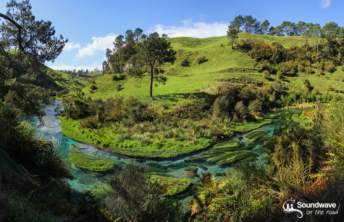 Blue Springs, Te Waihou Walkway, New Zealand