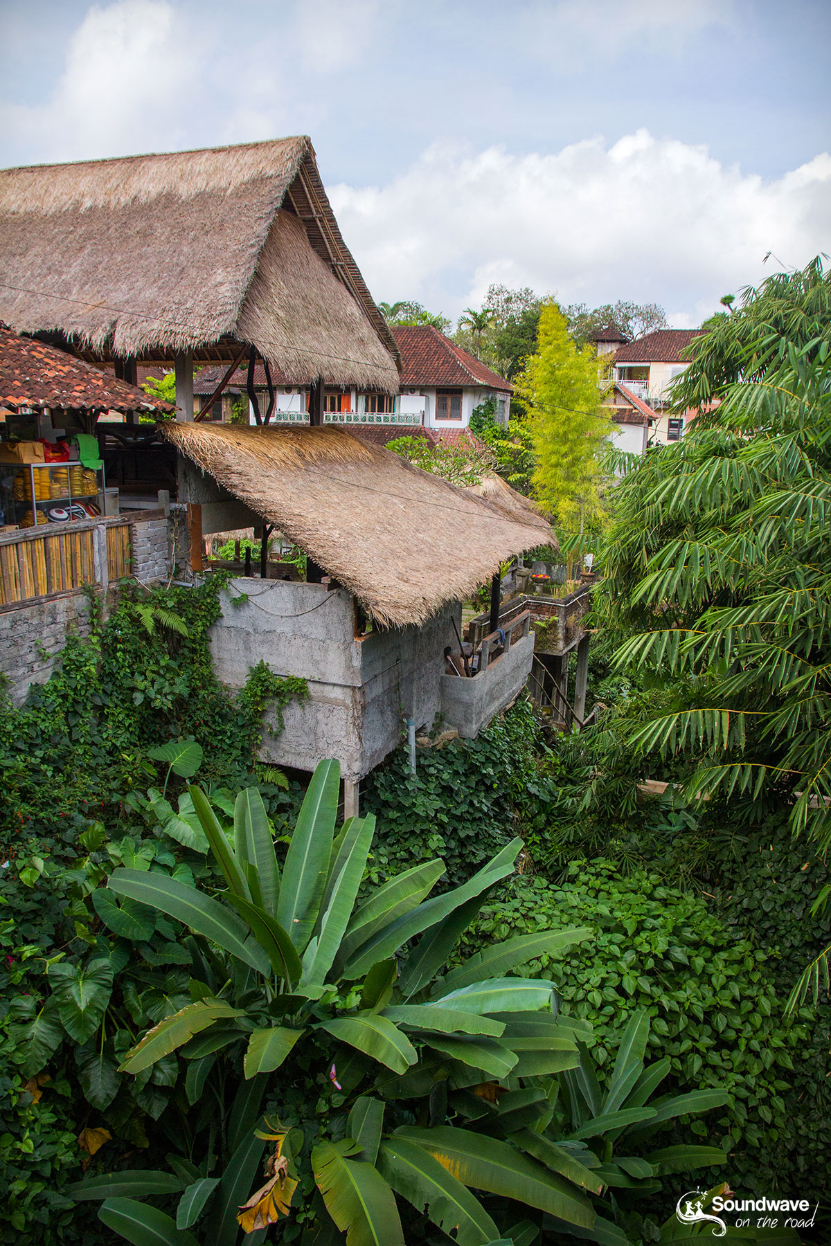 Tropical view in Ubud