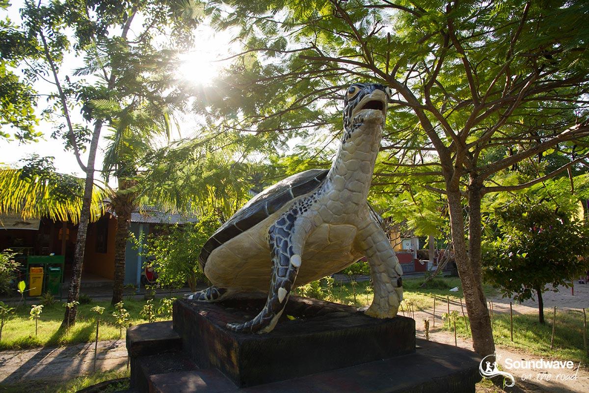 Centre d'éducation et de conservation des tortues à Bali