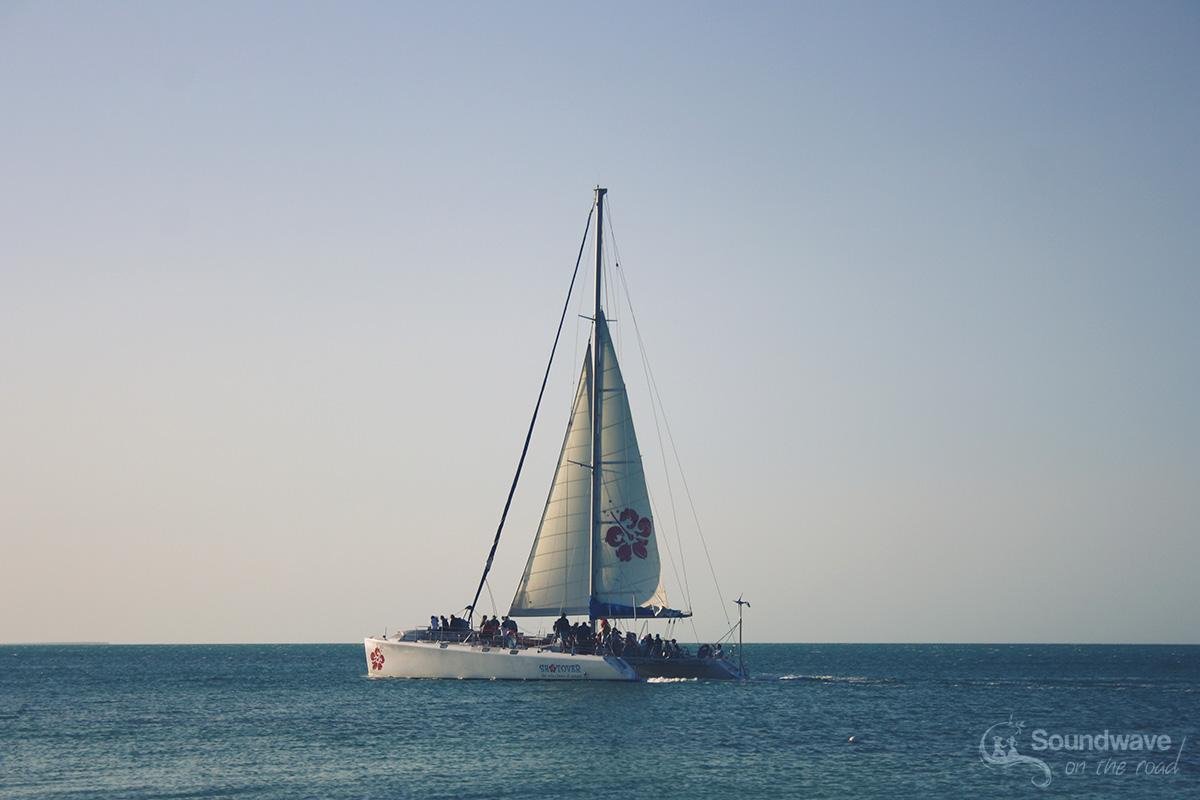 Shotover Cruise, Shark Bay, Western Australia