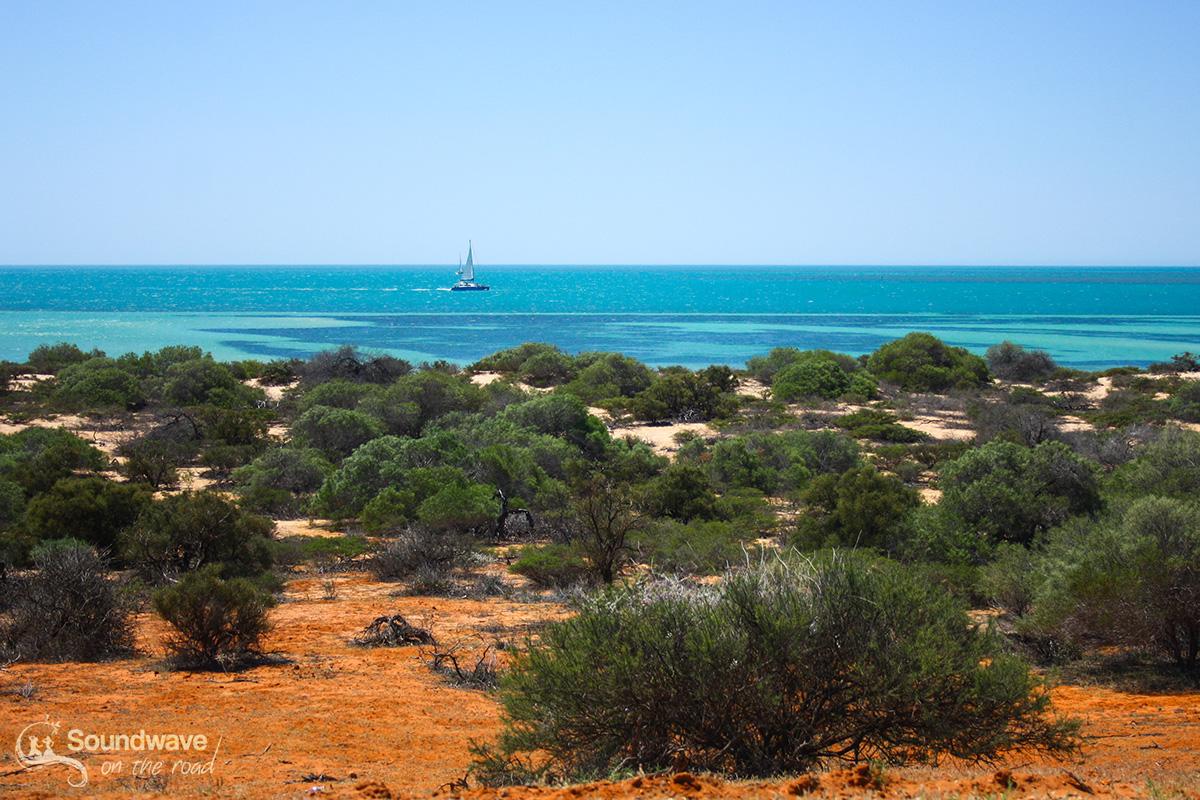 Travel and sail in Shark Bay, Western Australia
