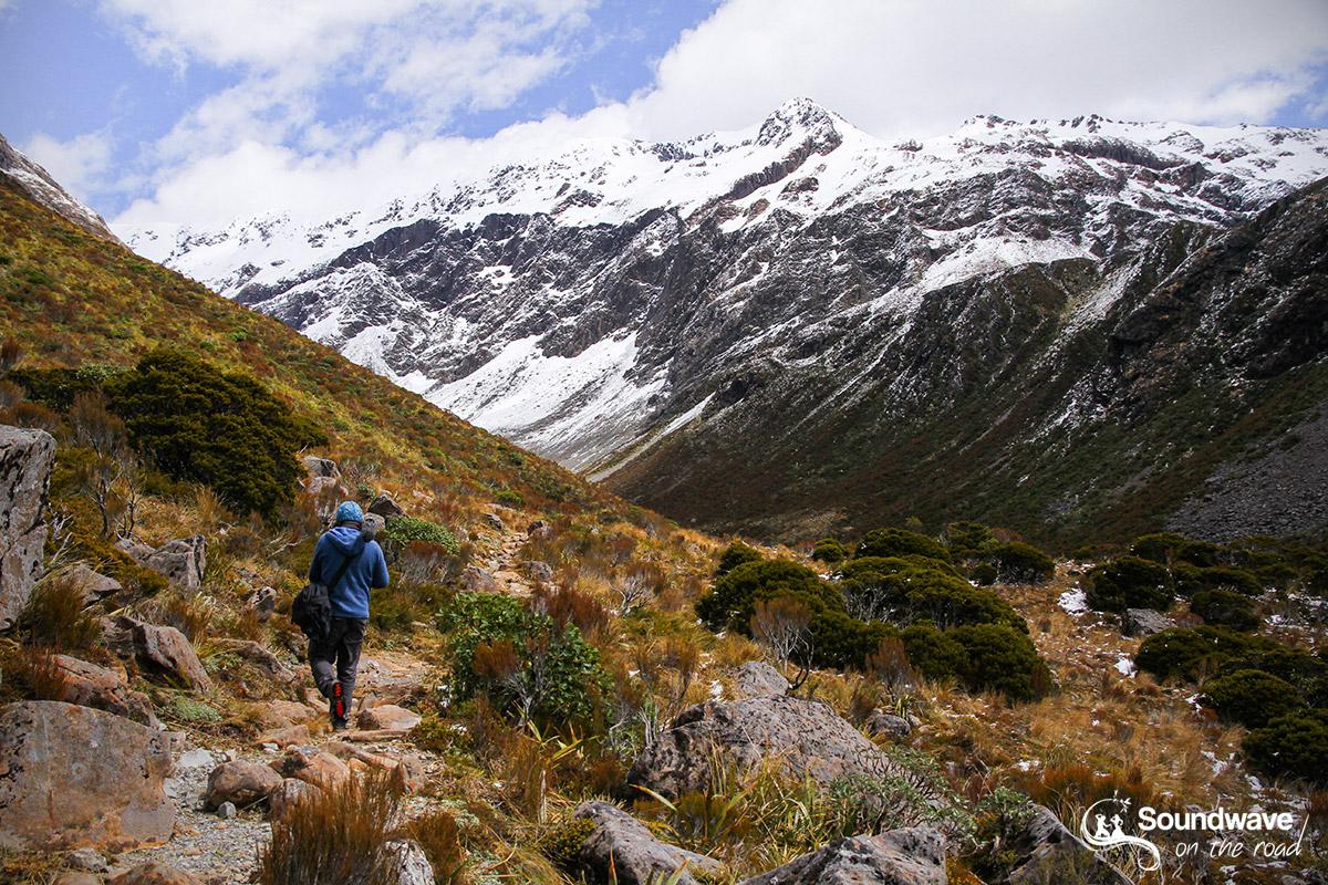 Otira Valley, Arthur's Pass
