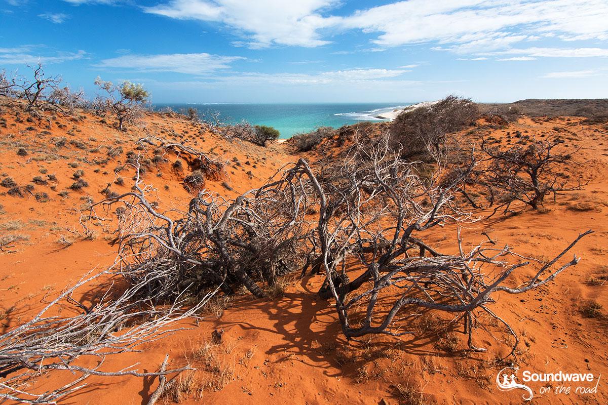 Ningaloo Coast Western Australia