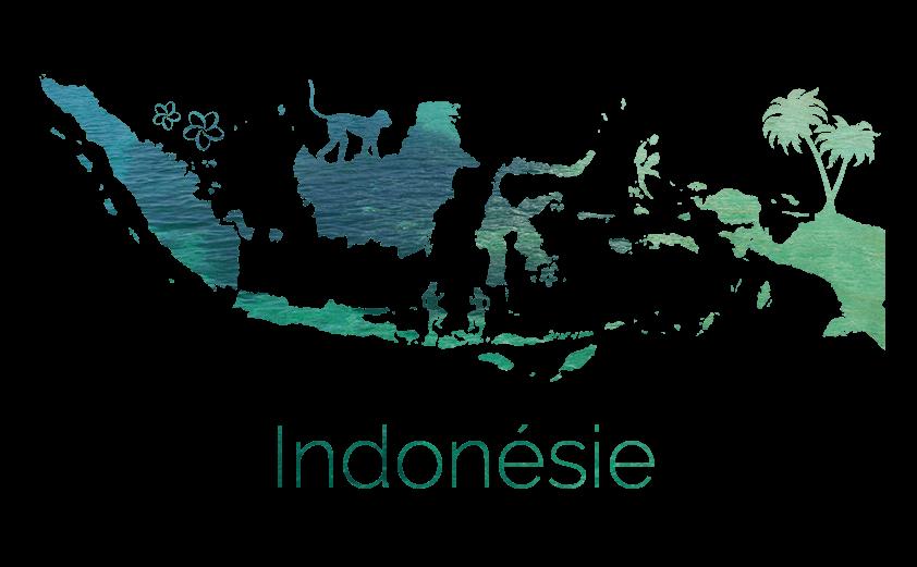 Blog Voyage Indonésie