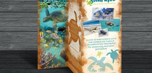 Dépliant Pour Un Programme De Conservation Environnementale / Brochure Design For A Conservation Program