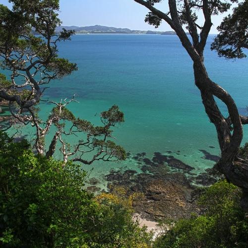 Paysage Côtier En Nouvelle Zélande