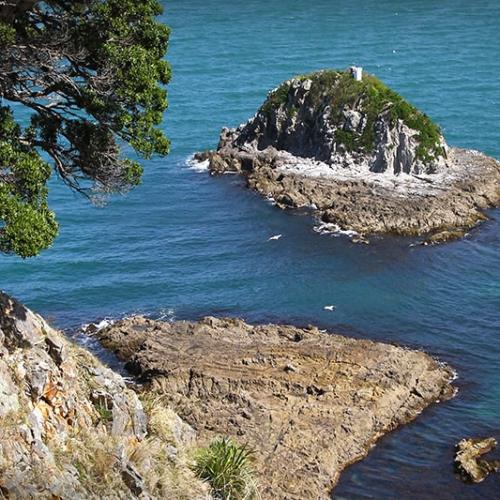Ilot En Nouvelle Zélande