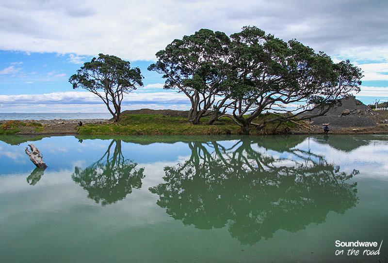 Reflet d'arbres sur un lac en Nouvelle Zélande