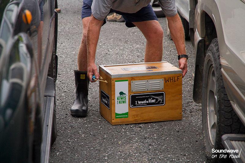 Kiwi release in NZ
