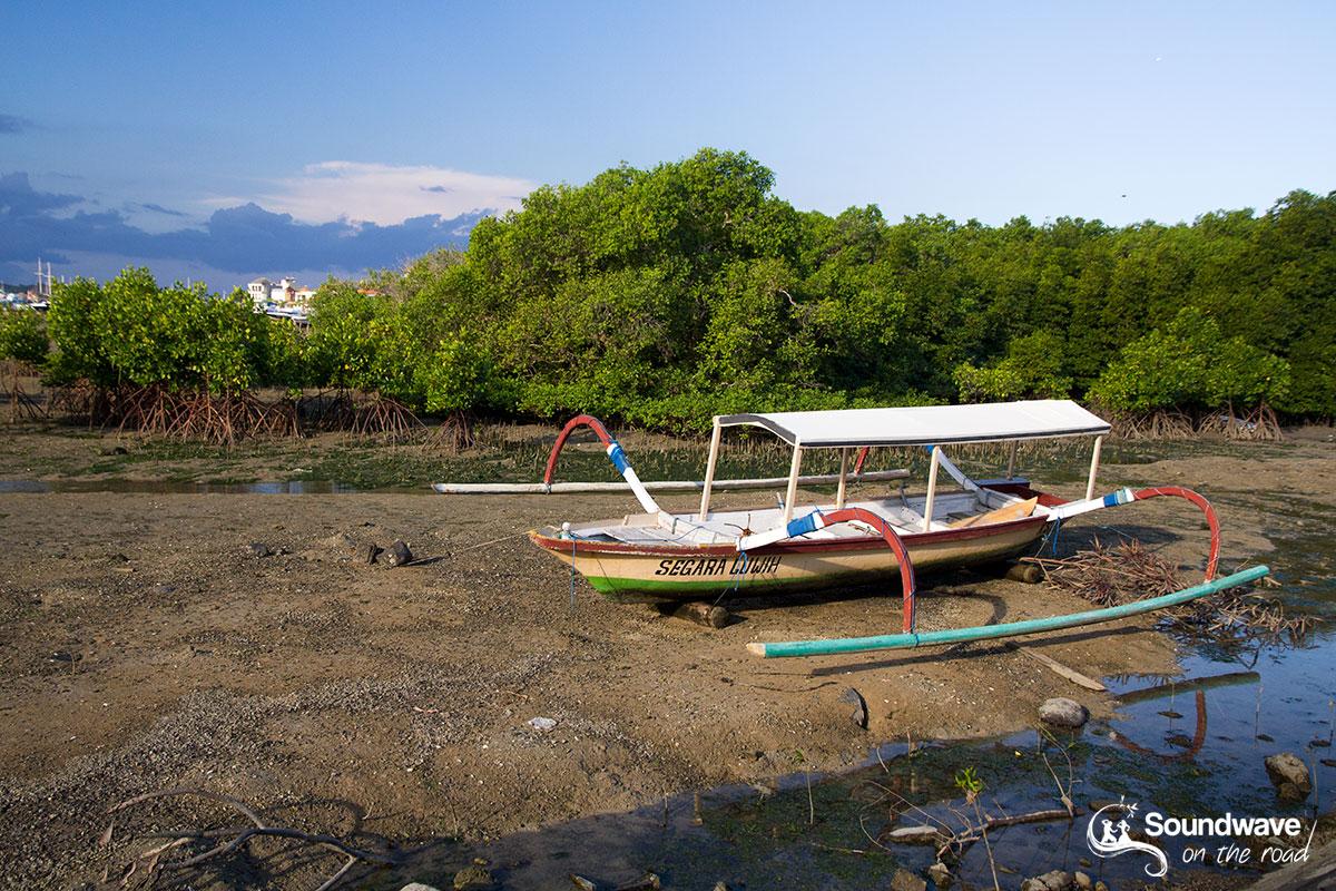 Bateau traditionnel dans la mangrove à Serangan Island
