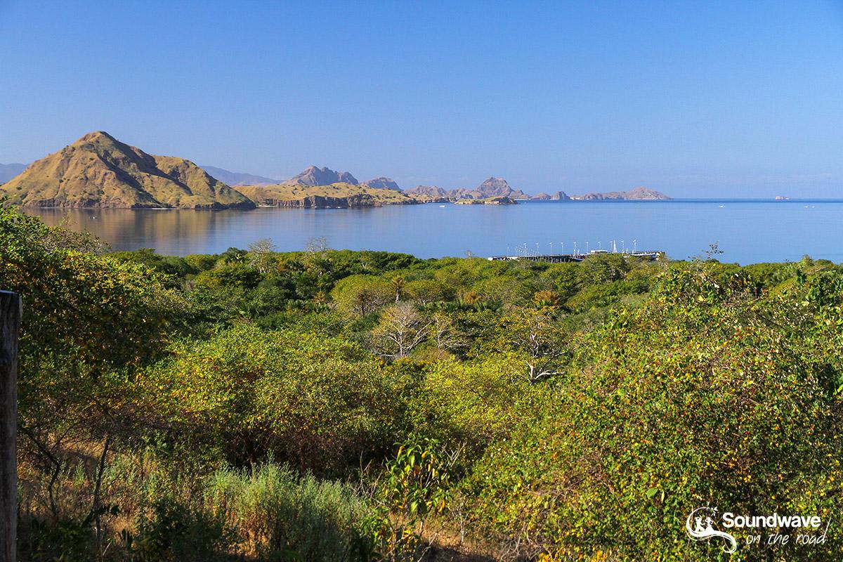 Voyage au Parc National de Komodo - Sulphurea Hill Lookout