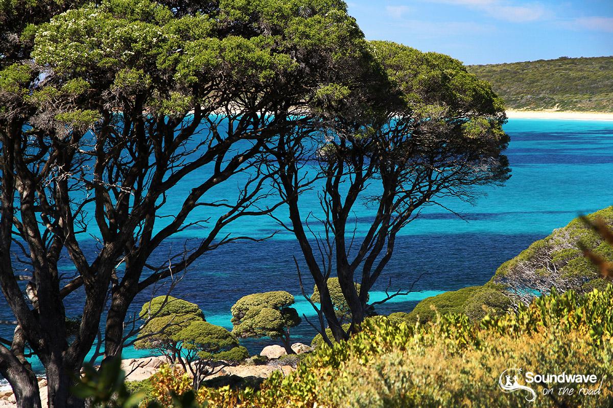 Bunkey Bay Australia