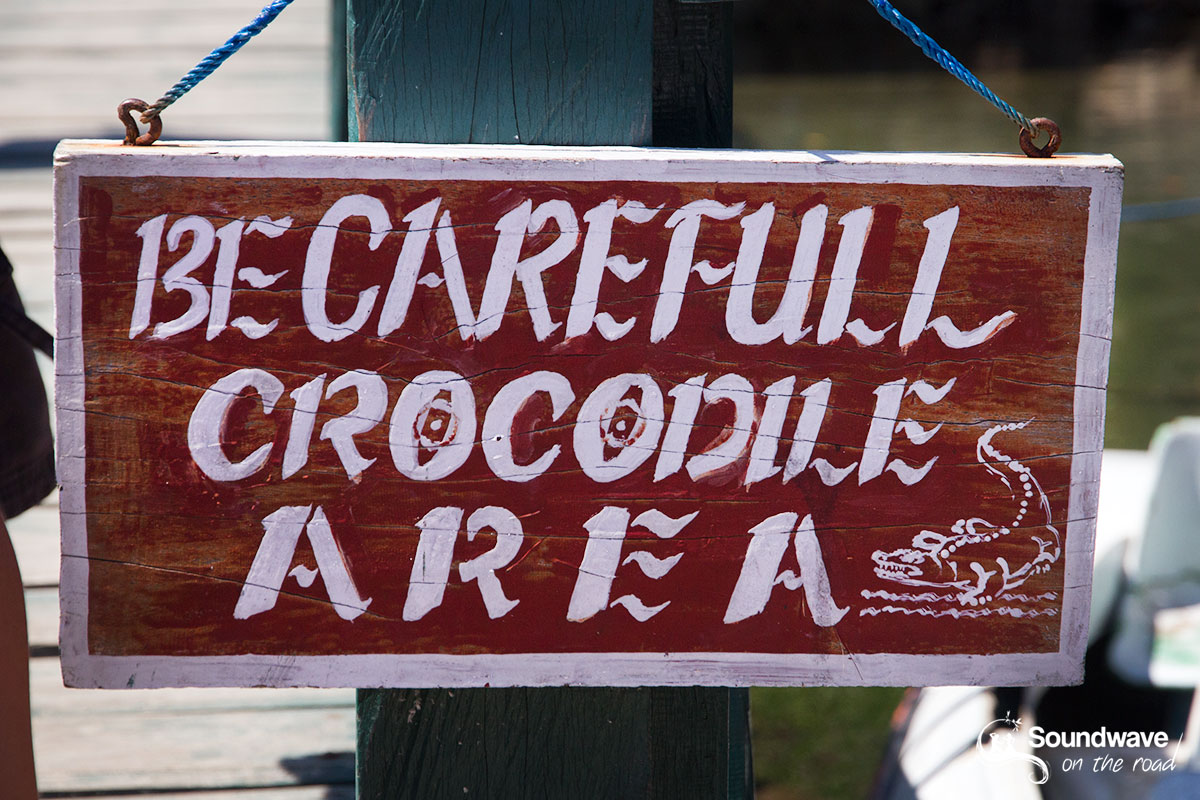 Crocodile Area