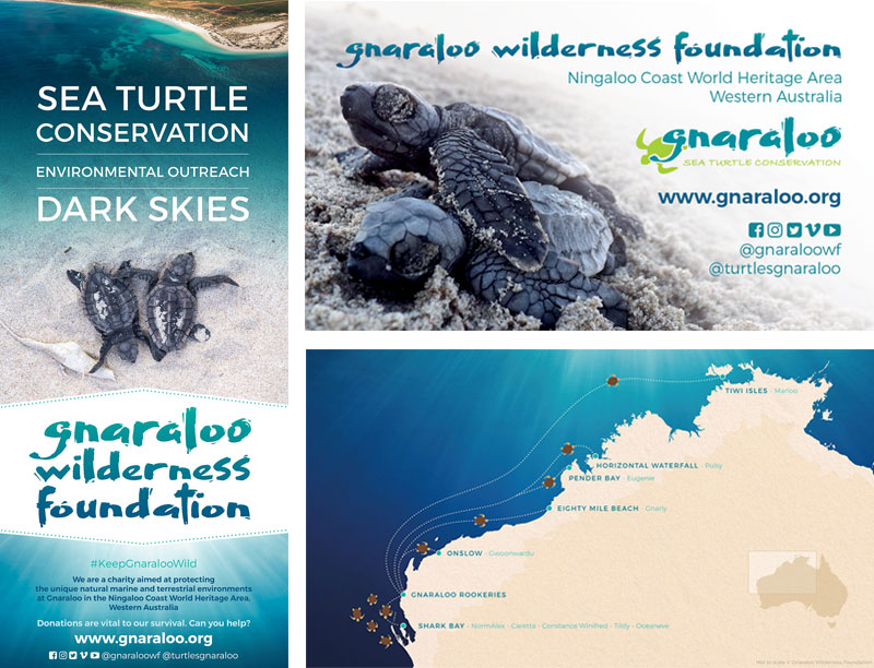 Design graphique pour une association de protection de l'environnement / Graphic Design for a not-for-profit charity