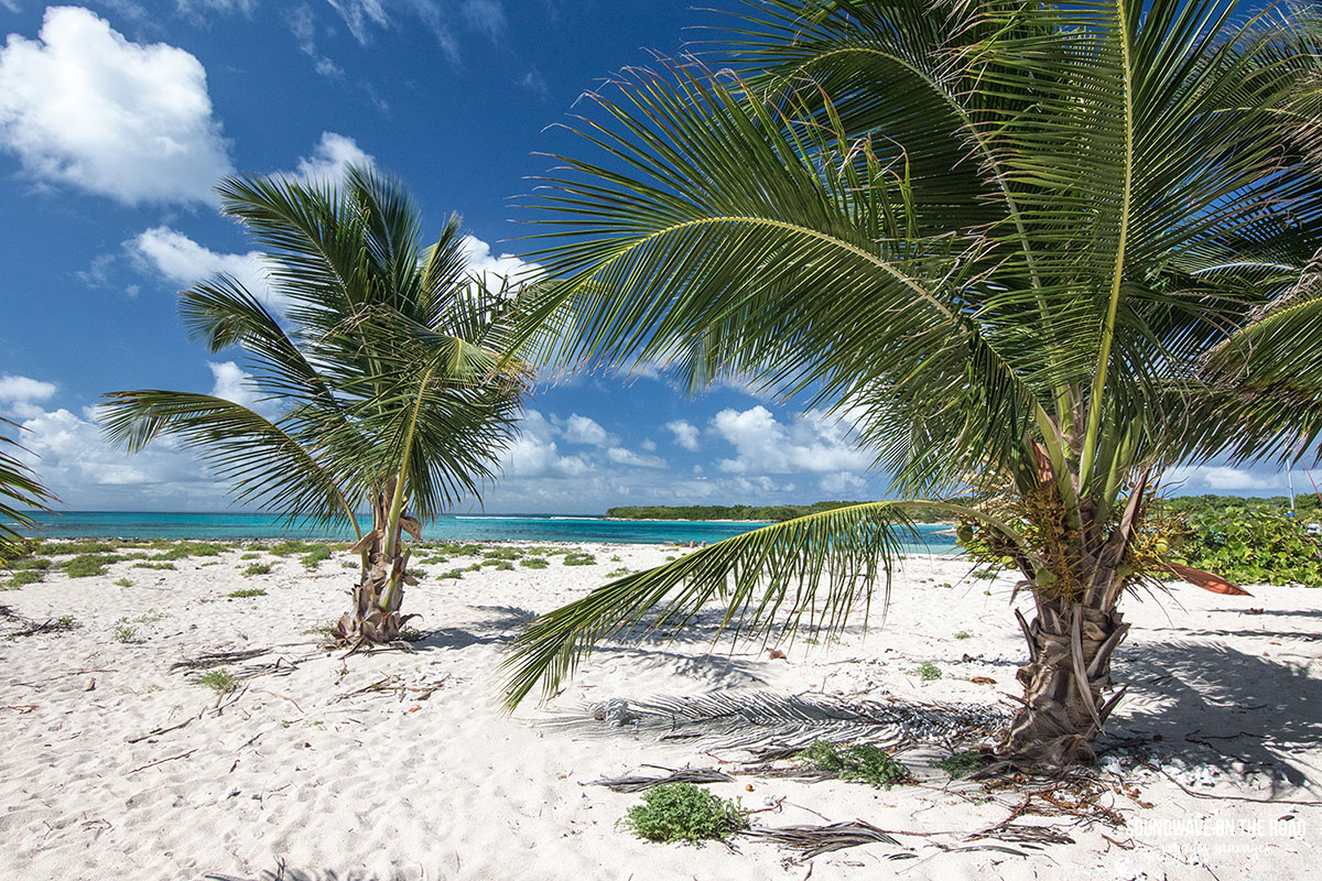 Voyage à Petite Terre, îlets paradisiaques au large de Saint François, Guadeloupe