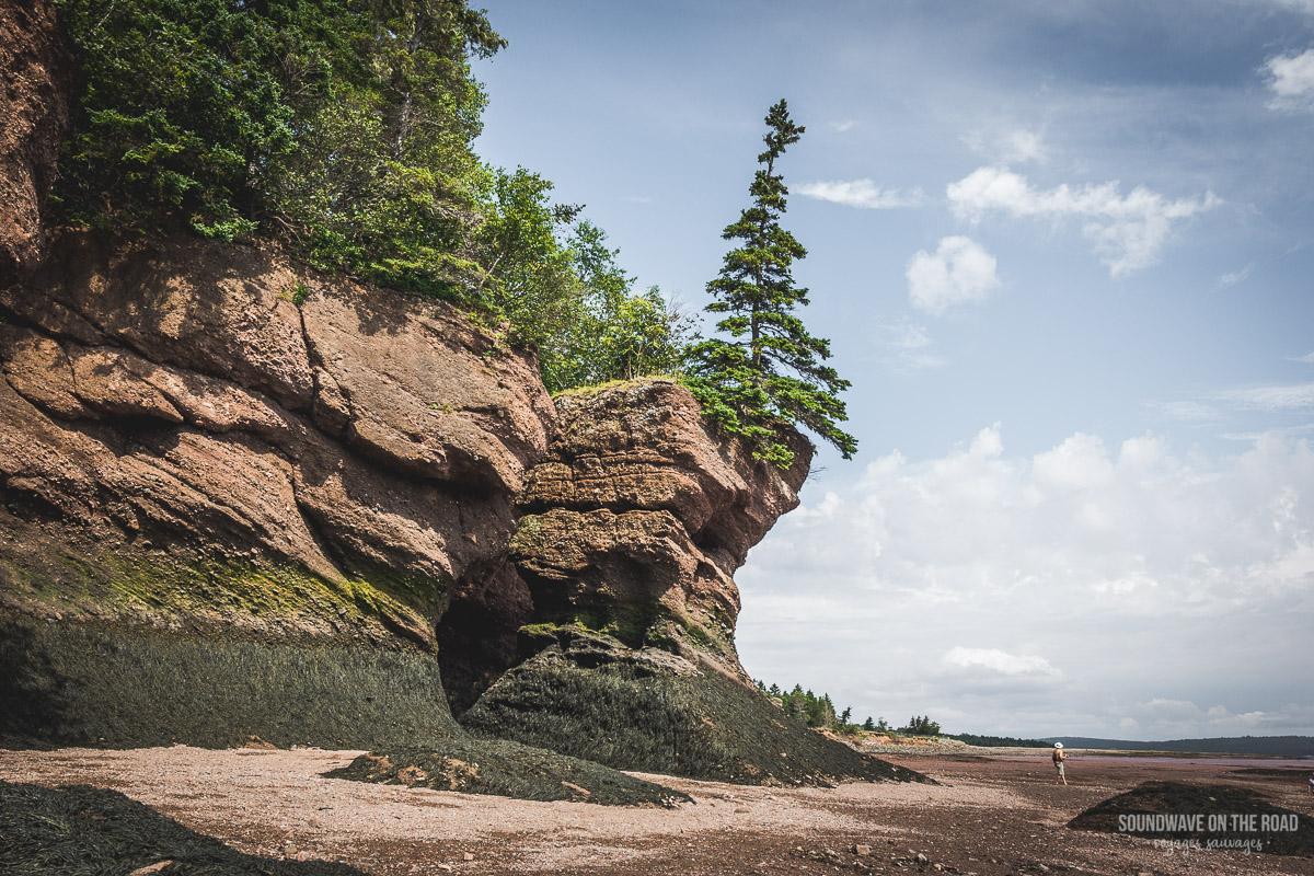 Paysage des Hopewell Rocks au Nouveau Brunswick