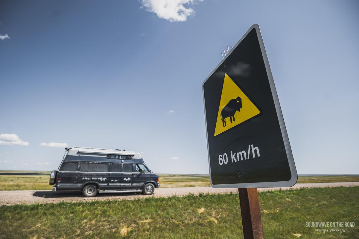 Panneau Attention Bison dans le Bloc Ouest du Parc National des Prairies au Canada
