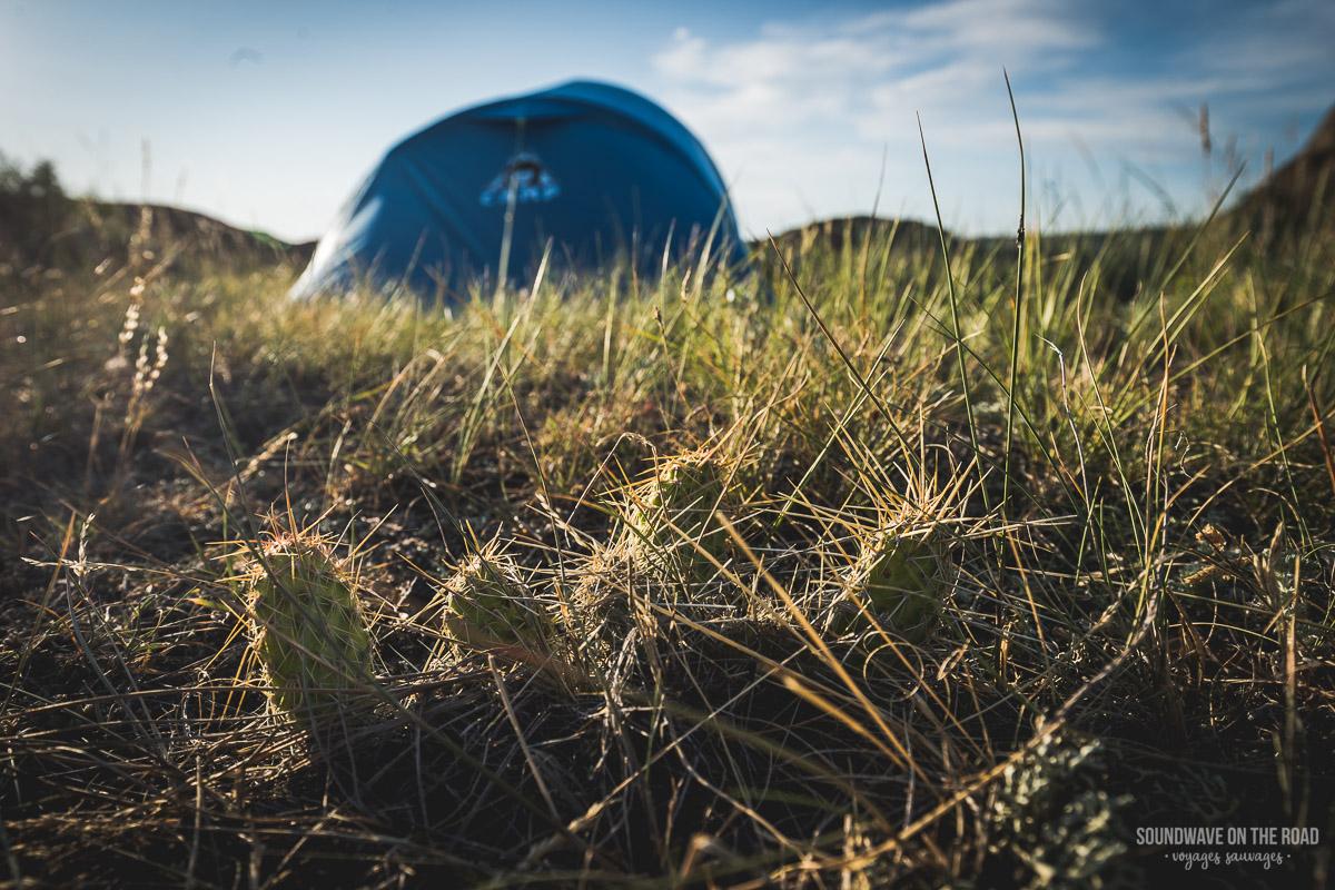 Camping dans le Parc National des Prairies
