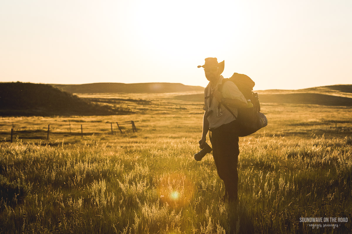 Cowboy in the Grasslands
