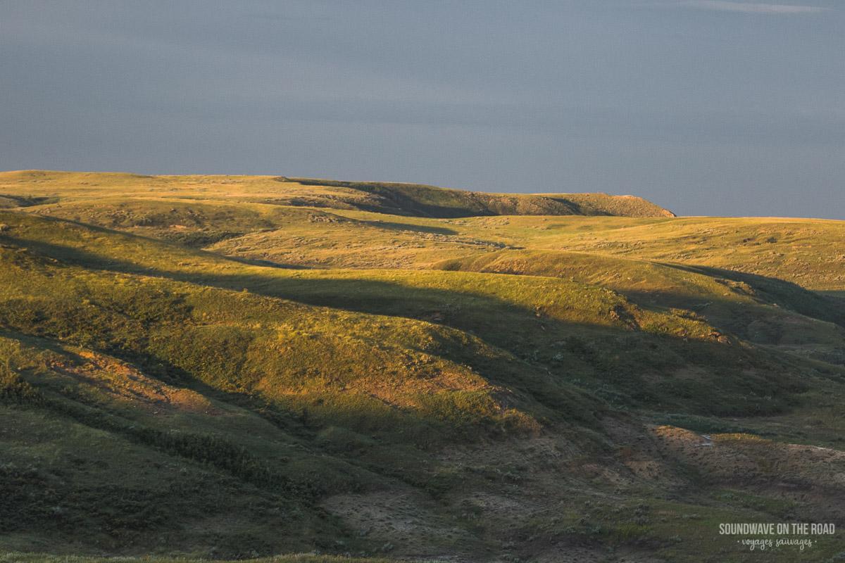 Paysage des Grasslands au Canada