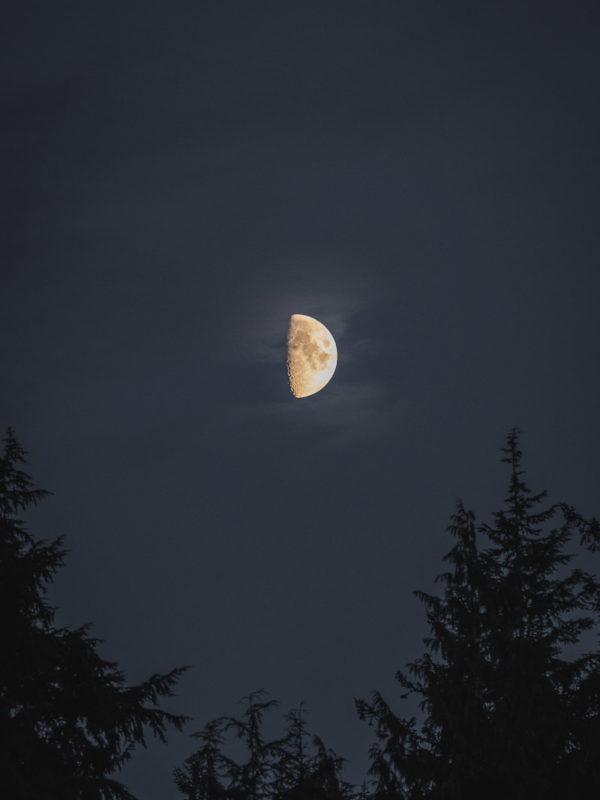 Demi Lune